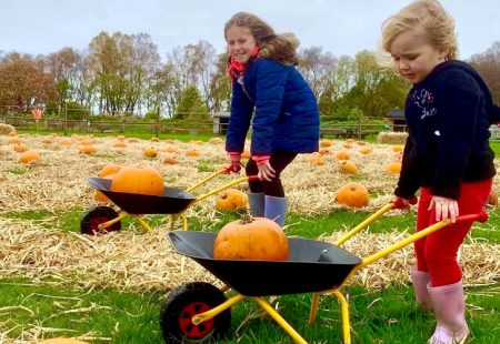 Fang-tastic Halloween Festival at Matlock Farm Park