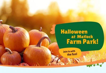 Matlock farm park halloween