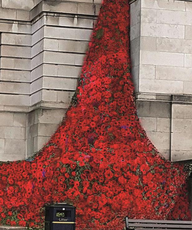 Chesterfield poppy cascade