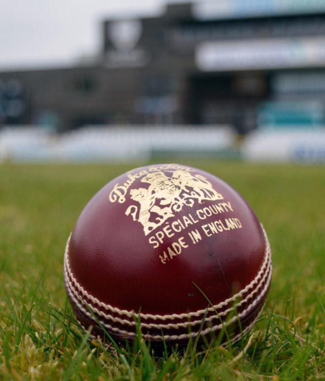 Head of Cricket